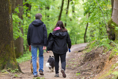 Couple hiking with a dog