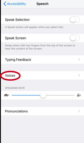 Voice 4