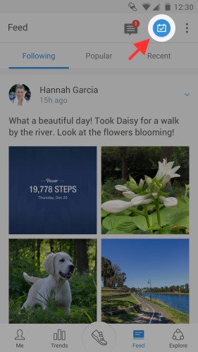 Pacer walking app social feed check in screen