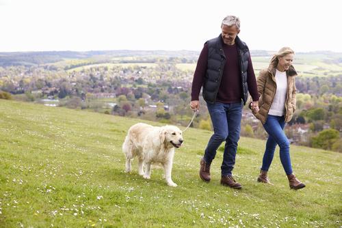 Couple walking dog in hilly terrain