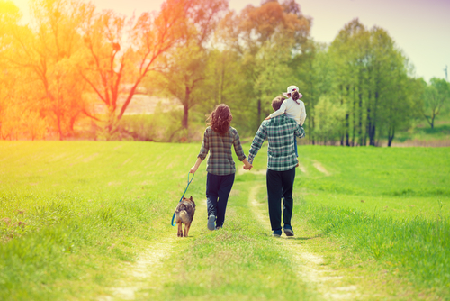 Couple with child and dog walking in field
