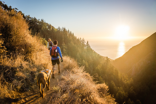 hiking with dog at sunrise