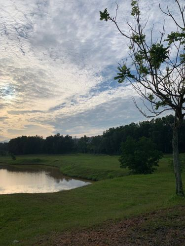 Emerald West Park Malaysia Lake and Grass