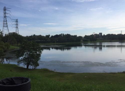 Subang Ria Park Malaysia Lake & Grass