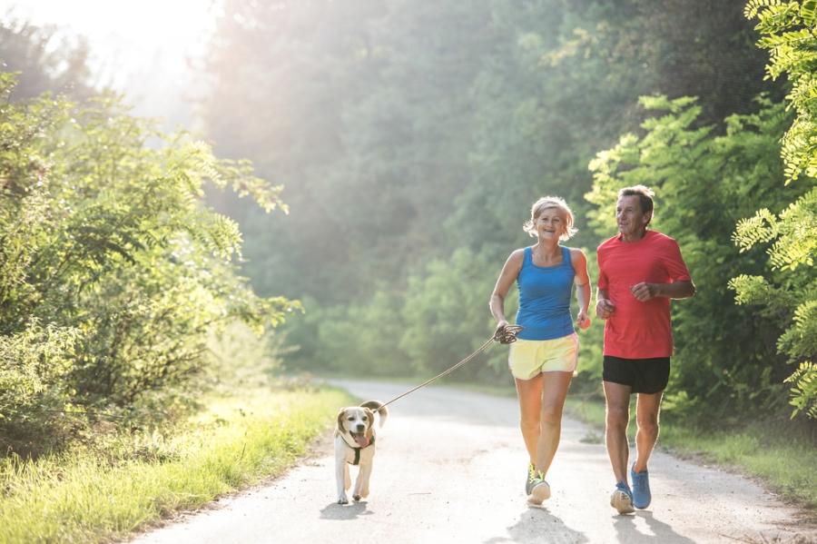 Senior couple walking dog in nature